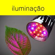 bot-iluminação