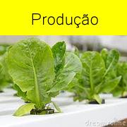 bot-producao